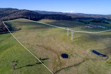 73 acres TONKIN ROAD Labertouche VIC 3816 - Image 3