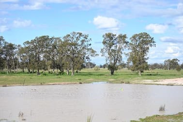 'Claremont' WYANGA ROAD Narromine NSW 2821 - Image 3