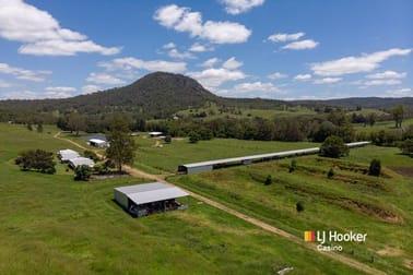 520 Capeen Creek Road Old Bonalbo NSW 2469 - Image 1