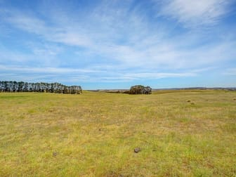 Lot 1/Waterloo Canyonleigh Road Sutton Forest NSW 2577 - Image 3