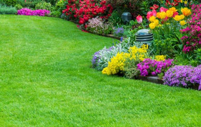 Gardening  business for sale in South Brisbane - Image 3