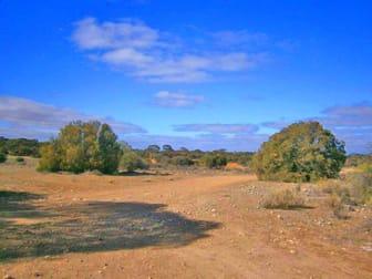 Lot 91 Sturt Highway Blanchetown SA 5357 - Image 1
