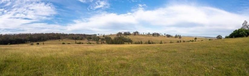 Lot 1 Wyndella Road Lochinvar NSW 2321 - Image 1