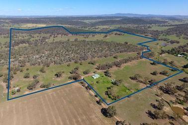 97 Pecks Road Molong NSW 2866 - Image 3