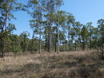 909 Hills Road Mount Maria QLD 4674 - Image 2