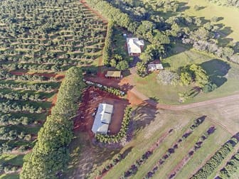 236 BUTCHERS ROAD South Isis QLD 4660 - Image 2