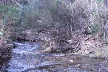1080 Hereford Hall Road Braidwood NSW 2622 - Image 3