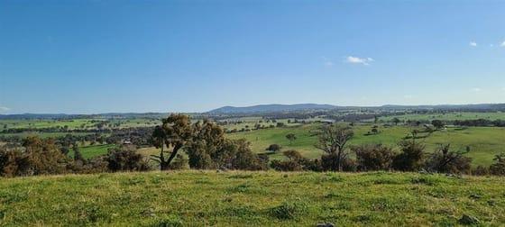 Salt Clay Road Cootamundra NSW 2590 - Image 3