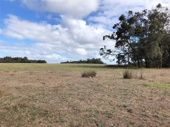Lot 10281 Pemberton Northcliffe Road Northcliffe WA 6262 - Image 1
