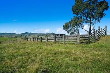 1620 Bingleburra  Road East Gresford NSW 2311 - Image 3