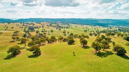 109 Tabberatong Road Limekilns NSW 2795 - Image 3