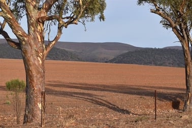 Section 11 Yarrah Quorn SA 5433 - Image 2