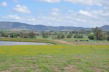 10 Cressfield Rd, 'dark Star Lodge', Parkville Via, Scone NSW 2337 - Image 1