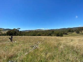 39/ Campbells Creek Road Mudgee NSW 2850 - Image 3