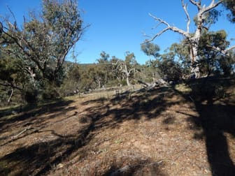 Lot 16 Brassey Trail Bungarby NSW 2630 - Image 3