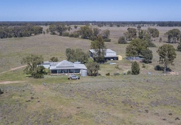 651 WANGMANS ROAD Baradine NSW 2396 - Image 1