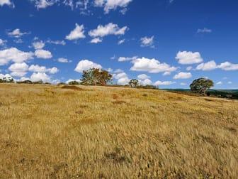 1325 Swallows Nest Road Dog Rocks NSW 2795 - Image 1