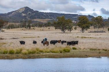 1035 Bruxner Way Tenterfield NSW 2372 - Image 2