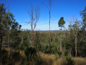 LOT 39 NIELSONS ROAD Good Night QLD 4671 - Image 3