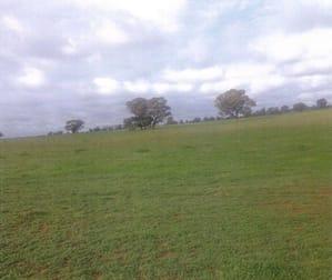 Cnr Twenty Four Lane and Hillside Road Moama NSW 2731 - Image 3