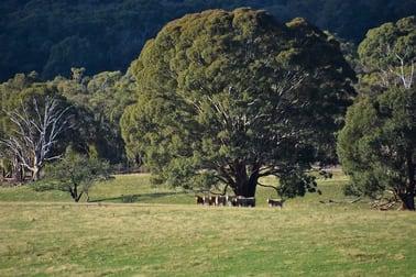 109 Tabberatong Road Limekilns NSW 2795 - Image 2