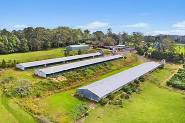 10 Lillicrapps Road Mangrove Mountain NSW 2250 - Image 3