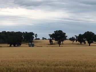 Castlereagh Highway Gulgong NSW 2852 - Image 1