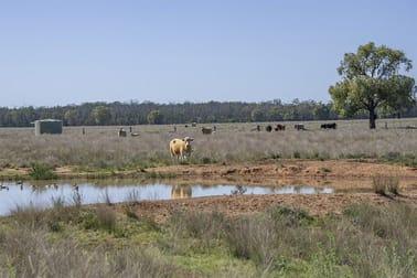 651 WANGMANS ROAD Baradine NSW 2396 - Image 3