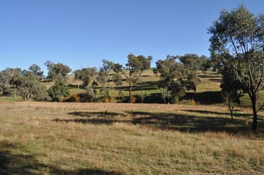 289 Spring Creek  Road Young NSW 2594 - Image 3
