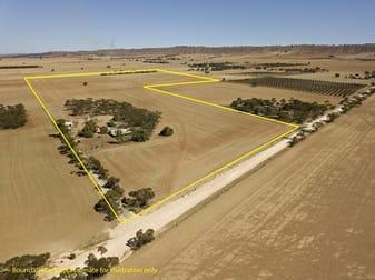 87 Hills Road Robertstown SA 5381 - Image 1