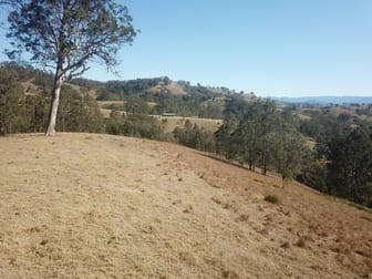 Lot 1 DP 369809 Off Quartpot Creek Road, Underbank Via Dungog NSW 2420 - Image 2