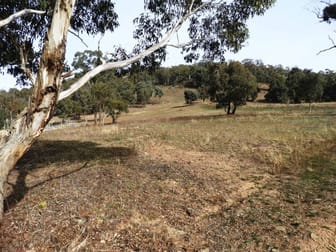 Lot 11 Junction Road Tuena NSW 2583 - Image 1