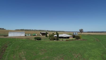 491 Forest Springs Road, Spring Creek QLD 4361 - Image 1