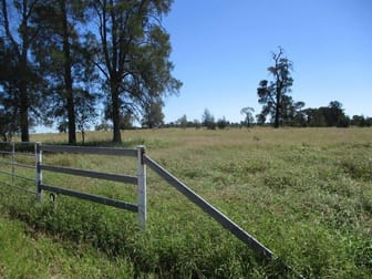 INVESTMENT OPPORTUNITY Chinchilla QLD 4413 - Image 3