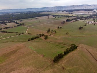 139 acres Stuhrs Road Darnum VIC 3822 - Image 3