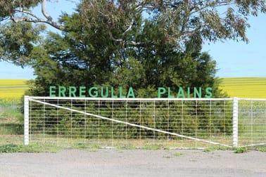 Erregulla Plains, Midlands Rd Mingenew WA 6522 - Image 1