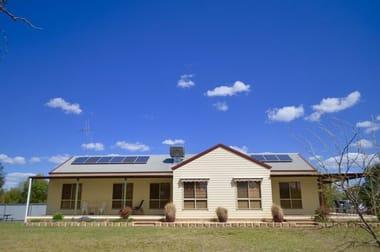 91 Carrawobitty Lane Forbes NSW 2871 - Image 3
