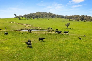 511 Cooksvale Road Crookwell NSW 2583 - Image 2