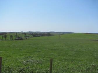 52 Valleyfield Road Sassafras TAS 7307 - Image 3