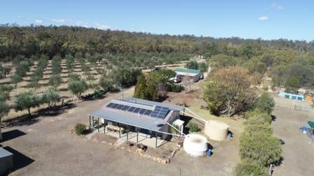 2 Rosemary Court Forest Ridge QLD 4357 - Image 1