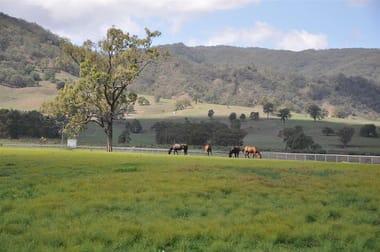 10 Cressfield Rd, 'dark Star Lodge', Parkville Via, Scone NSW 2337 - Image 2
