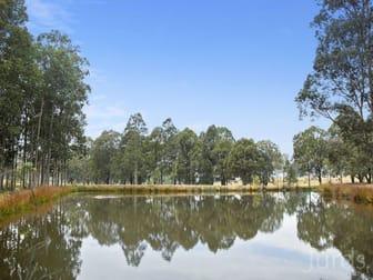 42 Big Ridge Lane Sedgefield NSW 2330 - Image 2