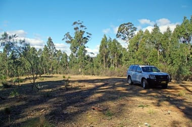 Lot 380 New Station Creek Road Wyndham NSW 2550 - Image 3