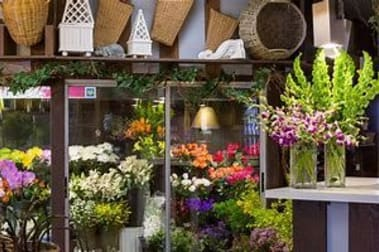 Shop & Retail  business for sale in Northern Suburbs WA - Image 1