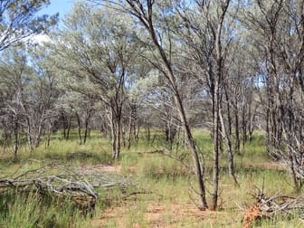 """""""Youngerina"""" Hungerford Road Bourke NSW 2840 - Image 2"""