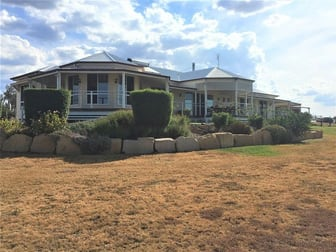 545 Willowvale Road, Warwick QLD 4370 - Rural & Farming For