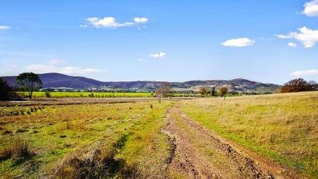 9272 Murray River Road Walwa VIC 3709 - Image 3
