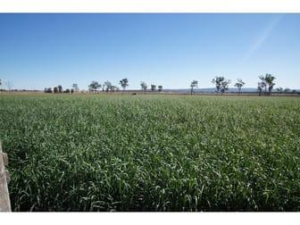 Lester Road, Morton Vale QLD 4343 - Image 1