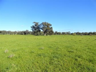SPRING LAWN, GAYFER ROAD Chiltern VIC 3683 - Image 1