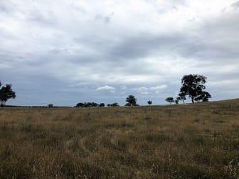 Castlereagh Highway Gulgong NSW 2852 - Image 2